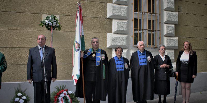 Kalocsa,2018.VI.25 XIII